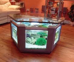 office desk fish tank. Comfy Office Desk Fish Tank P