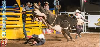 pro bull riding. Simple Pro In Pro Bull Riding L