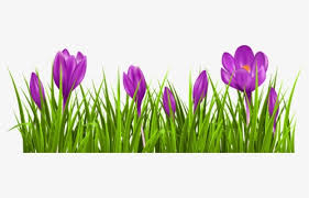 free spring flower border clip art with