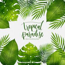 tropical background with watercolor plants free vector