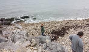 charmouth beach jurassic coast dorset united kingdom