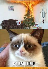 grumpy cat smiling is contagious.  Contagious Grumpycathasamerrychristmas1 For Grumpy Cat Smiling Is Contagious S