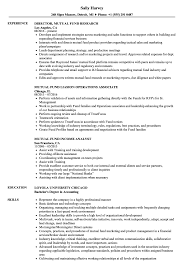Mutual Fund Administrator Sample Resume Mutual Fund Resume Samples Velvet Jobs 17