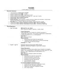 Resume Examples For Experienced Professionals Fabulous Technical
