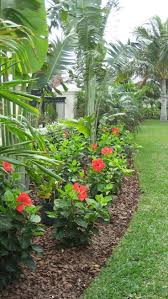 The Ultimate Revelation Of Tropical Landscaping 61