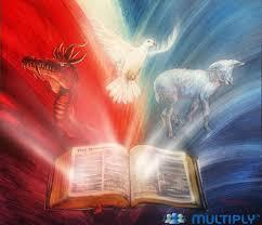 Resultado de imagem para Livro apocalipse