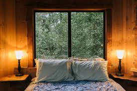 Contemporary Cabin Boys Bedroom With Gray Tree House Bed  Country Treehouse Bedding