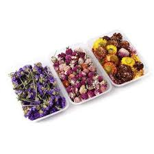1box real dried flowers jewellery for