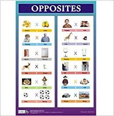 Buy Opposites Chart For Kids Book Online At Low Prices In
