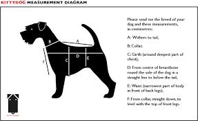 Measurement Size Guide Kittydog