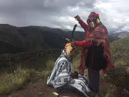 Image result for ayahuasca shaman retreat