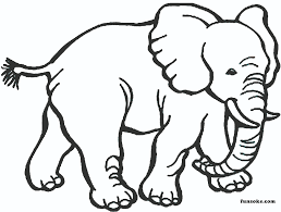 © the national geographic society, inc. Coloring Pages Animals Easy Funsoke