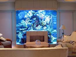 I've been obsessed with fish tanks and aquariums for quite awhile. I even  record Tanked (which I highly recommend). But I never seem to have the  space ...