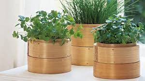 Small Picture Fine Herb Garden Ideas Australia Inspiring Exterior Design With