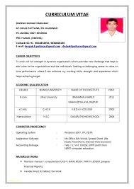 Job Resume Pdf Llun New Resume Model Pdf