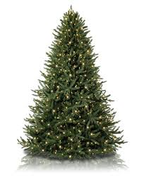 What Are The Different Types Of Christmas Tree Lights  QuoraTypes Of Christmas Tree Lights