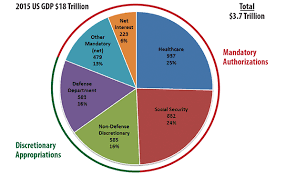 2015 Us Budget Pie Chart The Back Page