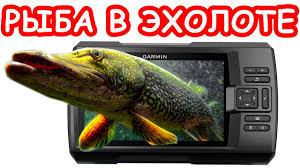 рыба на эхолоте что видит <b>эхолот</b> вся правда об эхолотах