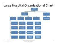 Iloilo Mission Hospital Organizational Chart Iloilo Mission Hospital Organizational Chart Introduction