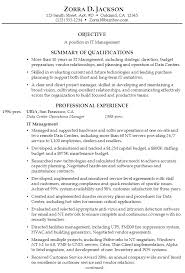Sample Resume IT Management ...