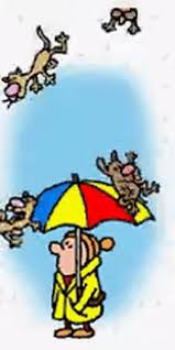 animated raining cats and dogs. Modren Dogs Raining Cats And Dogs Cats And Raining GIF On Animated Cats And Dogs S