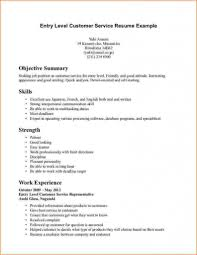 Entry Level It Resume With No Experience 5474738