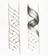 Come Disegnare I Ricci Disegno Nel 2019 Disegno Di Capelli