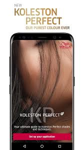 New Koleston Perfect Digital Shade Chart 1 3 0 Apk Download