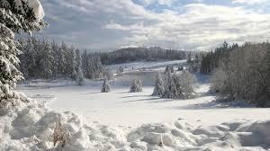 Картинки по запросу картинка поле зимой