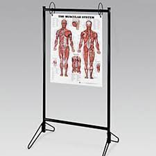 Portable Chart Stand Model 9880 Each