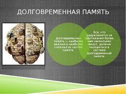 Диплом курсовая реферат Без исторической памяти нет будущего Историческая память реферат