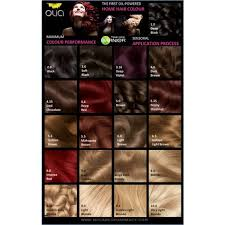 Olia Colour Chart Pin By Andrea Dudek On Frisur Garnier Hair Color Olia