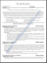 Professional Resume Help Resume Example