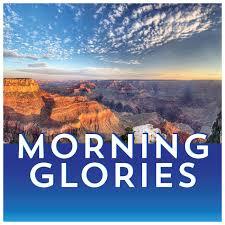 Morning Glories