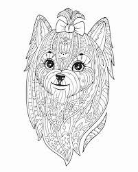 Kleurplaten Voor Volwassenen Dieren Fris Kleurplaten Mandala Hond