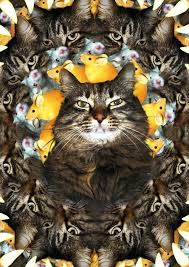 cat puzzle rug fractal cat by