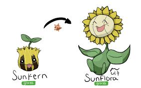 Evolution Chart Pokemon