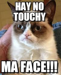 Hay No Touchy - Grumpy Cat meme on Memegen via Relatably.com