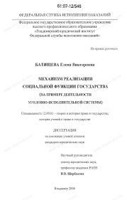 Диссертация на тему Механизм реализации социальной функции  Диссертация и автореферат на тему Механизм реализации социальной функции государства на примере деятельности уголовно