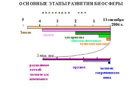 Реферат Основные этапы развития биосферы на Земле com  Основные этапы развития биосферы на Земле