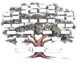 pedigree tree amazon com family tree chart posters prints