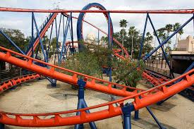 the scorpion rollercoaster at busch gardens tampa tampa florida