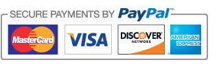 """Résultat de recherche d'images pour """"secure payment icon"""""""