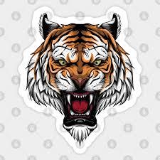 tiger head majestic tiger face tiger