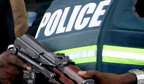 Image result for police parade cultist in lagos