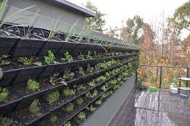Small Picture Garden Designers Melbourne Landscape Design Ryan Young Design