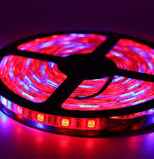 Wishful Led Grow Lights Best Top 10 Curve 936 Apollo Ideas And Get Free Shipping
