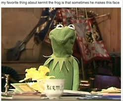 kermit my face when.  Kermit My Favorite Thing About Kermit The Frog Is That Sometimes He Makes This Face   Memexyz On When