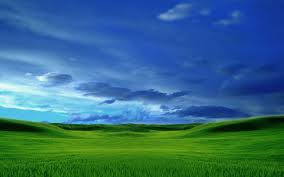 Nature Landscape Blue Skies and Green Pastures wallpapers Desktop