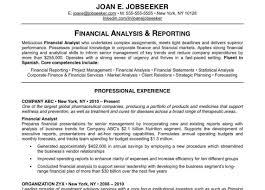 Reputable Resume Writing Services Resume Template